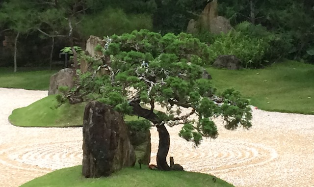 Taiji Forum Meeting 8th- 10th of September 2017  Qigong – TCM – Calligraphy – Taijiquan – I Ching – Bagua